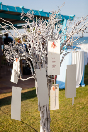 beach-wedding-decorations