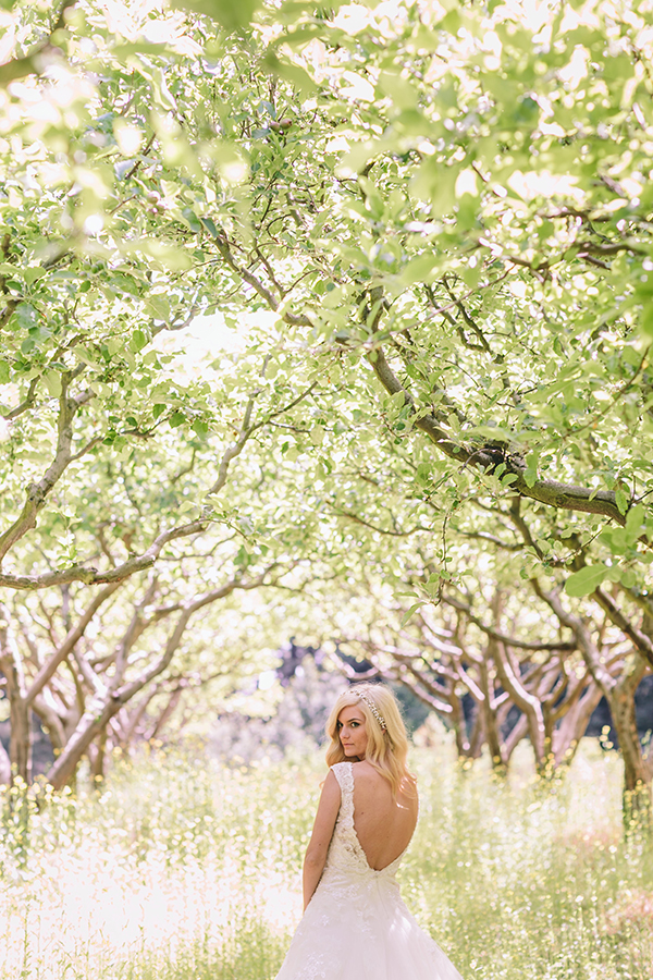 wedding-photoshoot-in-the-woodlands-california
