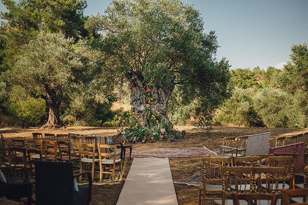 circular-ceremony-seating-olive-grove-wedding