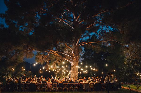 edison-lighting-wedding (2)