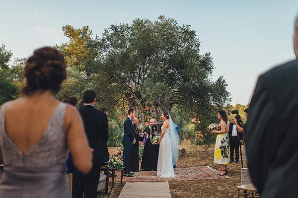 olive-grove-wedding (11)
