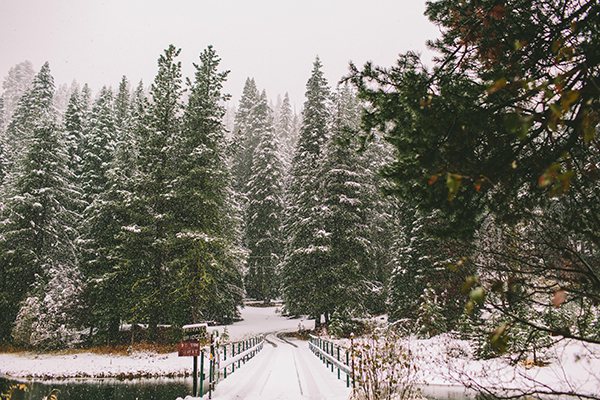 lake-tahoe-winter-wedding