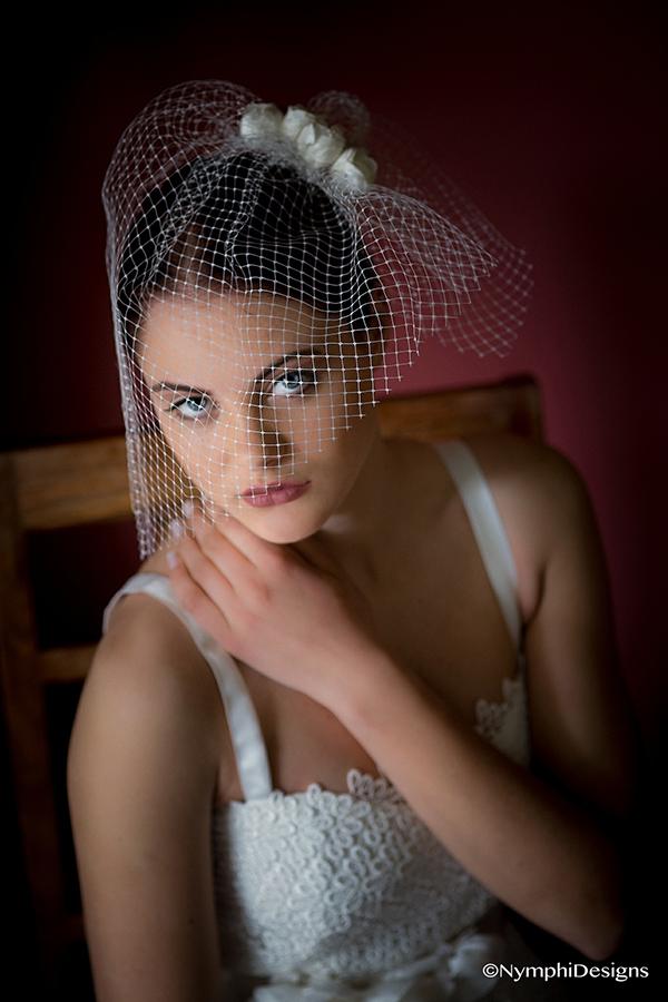 birdcage-veil (2)