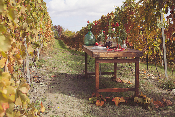 bohemian-vineyard-inspiration-5