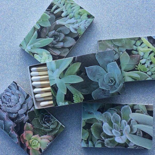 Succulents Matchbox