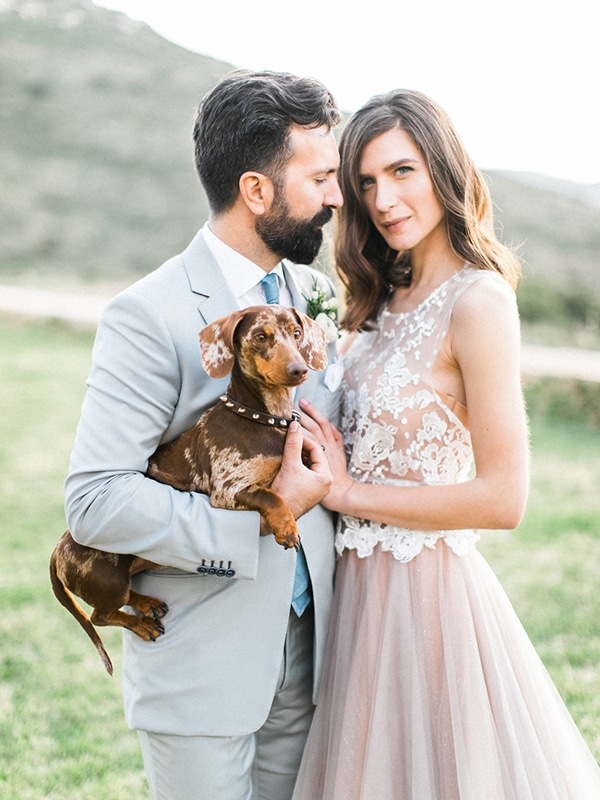 pets-weddings-how-include-them-5.