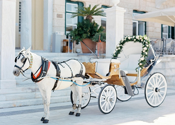 gorgeous-elegant-wedding-spetses_12